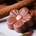 סדנאות שוקולד - סמיילי