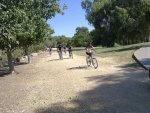 יום כיף - טיולי אופניים