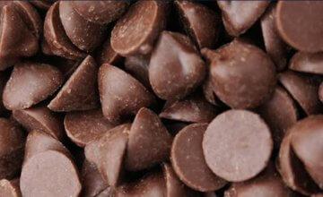 סדנת שוקולד פרלינים